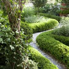 landscaping backyard landscape design with plants and big trees