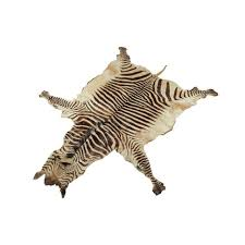 Genuine Zebra Rug Outstanding Real Zebra Skin Rug Pictures Ideas Surripui Net