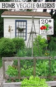 20 ideas for your home veggie garden gardens garden ideas and