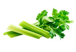 cuisiner le celeri cuisiner le céleri recettes bienfaits et calories cahier de