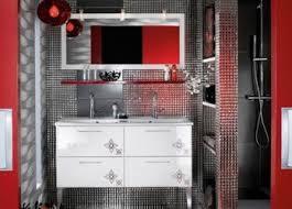 black and blue bathroom ideas fascinating best purple bathrooms ideas on bathroomd and white