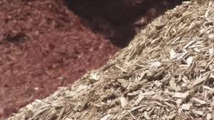 which is better for your yard wood chips or mulch youtube