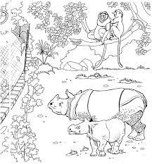 41 dessins de coloriage zoo à imprimer