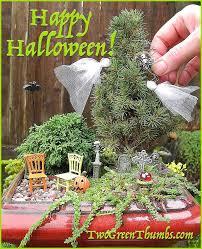 281 best mini garden design ideas images on pinterest mini