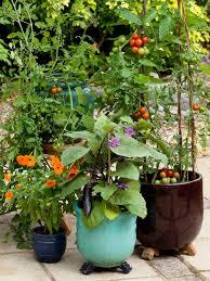 edible displays mediterranean mix hgtv