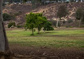 bench field pet foods llc morley field off leash dog park in balboa park amazing canyon views