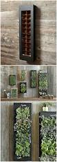 planters vertical wall planter indoor herb planters mounted box