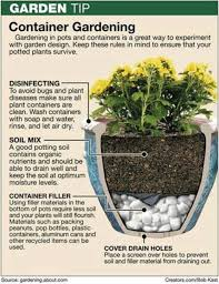 best container vegetable gardening ideas on staradeal com