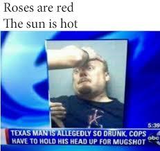 Blue Meme - 16 best roses are red rhyming memes images on pinterest ha ha