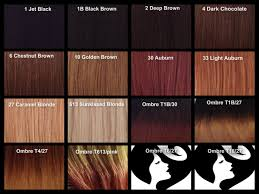 hair color chart caramel brown hair color chart popular long hairstyle idea