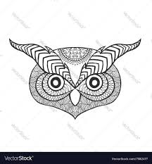 eagle owl head antistress coloring page vector image