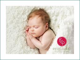 baby photographers squealer huntsville baby photographers erin cobb photography
