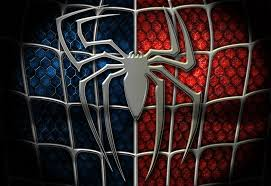 17 Best Images About Spider - 17 best images about spider man wallpaper on pinterest the spider