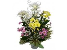 Floral Delivery Flower Delivery