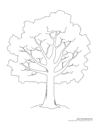 100 oak tree coloring page 5 how to draw a winter tree