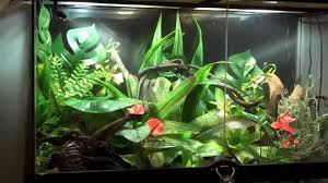 exoterra monsoon rs400 available december 2010 aquariums wes youtube