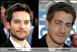 Meme Tobey Maguire - tobey maguire totally looks like jake gyllenhaal cheezburger