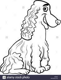 black white cartoon illustration funny purebred cocker
