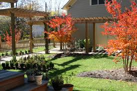 how to plant trees and shrubs in east tennessee willow ridge