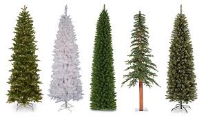 top 10 best pencil christmas trees 2017
