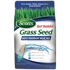 blue seed shop scotts 3 lb heat tolerant blue seed at lowes com