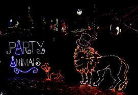 annmarie garden in lights garden in lights returns to amg dec 2 lexleader