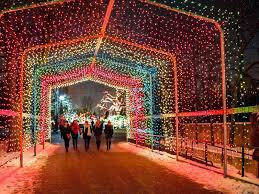 lights best 2017 displays in chicagoland plainfield il