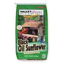 black oil sunflower seed 40 lbs sam u0027s club