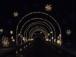 winter lights festival gaithersburg winter lights festival presented by city of gaithersburg arts and