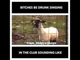 Females Be Like Meme - drunk bitches singing in clubs be like youtube