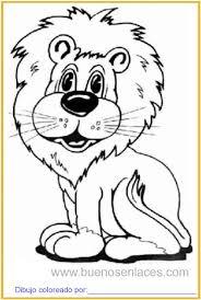 imagenes de animales carnivoros para imprimir dibujo de leones para colorear e imprimir