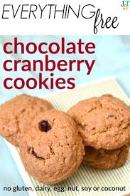 Free Chocolate Cranberry Cookies Just Take A Bite