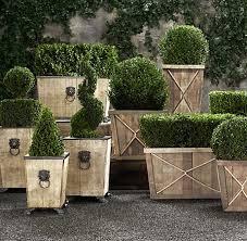 English Box Topiary - best 25 boxwood garden ideas on pinterest formal gardens