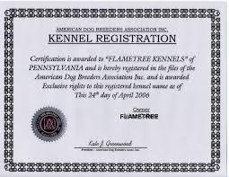 american pit bull terrier website flametree