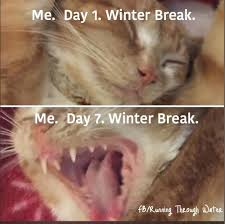 Winter Break Meme - 21 relatable winter break memes by parents just as overwhelmed as
