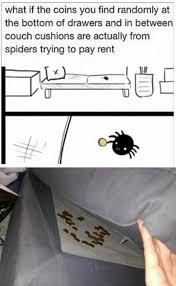 I Tried Killing A Spider - funny memes spiders paying rent meme collection pinterest
