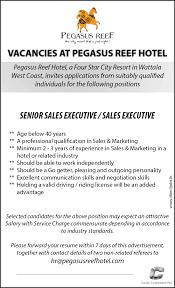 Resume Senior Sales Executive Senior Sales Executive Sales Executive