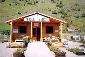 the tree shop garden centre cafe