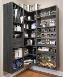 Kitchen Cabinets Shelves Ideas Kitchen Adorable Classy Kitchen Storage Ideas Small Kitchen
