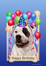 american bulldog x belgian malinois bulldog brindle white tamara burnett happy birthday garden flag