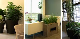 home garden interior design exterior interior plantscaping home outdoor garden plants design