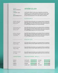 Best Font Type For Resume by 115 Best Cvs Images On Pinterest Resume Ideas Cv Design And
