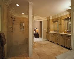 walk in shower ideas for bathrooms 16 best bath images on bathroom ideas bathroom