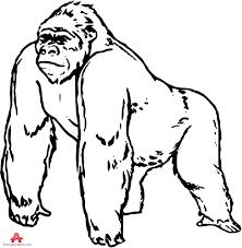 top 94 gorilla clipart free clipart image