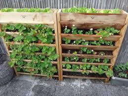 Watering Vertical Gardens - self watering vertical herb garden google search vertically