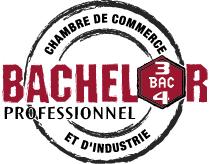Cci Martinique Ccim Fiches Pratiques Pour Vos Formalités Cci Martinique Ccim Ecole De Gestion Et De Commerce