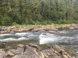 the best camping in kootenai national forest the dyrt