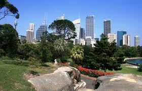 Botanical Garden Sydney by The Royal Botanic Gardens Sydney The Most Beautiful Botanical