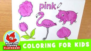 pink coloring page for kids maple leaf learning youtube