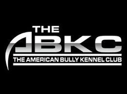 american pitbull terrier gotti razors edge home bank roll bullies extreme gottie line pitbulls bullies in